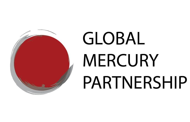 Global Mercury Partnership (GMP)